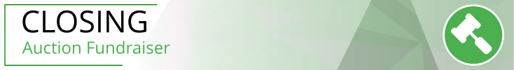 3bigsteps-banner%204-closing.png