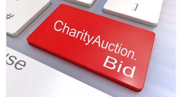 charityauction.bid