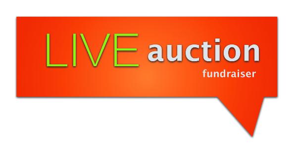 Live Auction Success